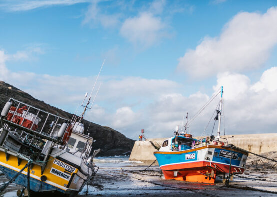 Port Isaac harbour forever cornwall cottages