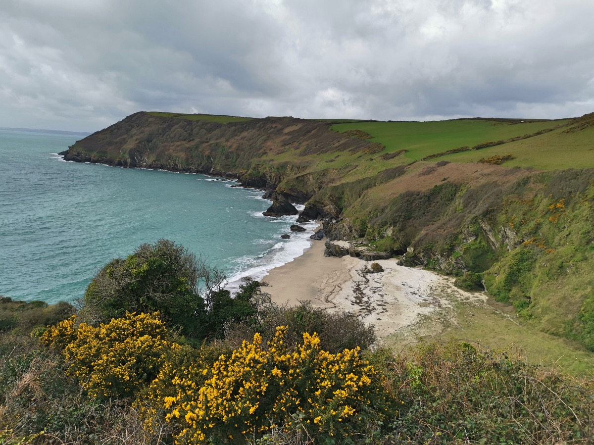 Lantic Bay Walk Forver Cornwall 00004