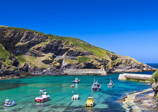 Holiday cottages in Port Isaac