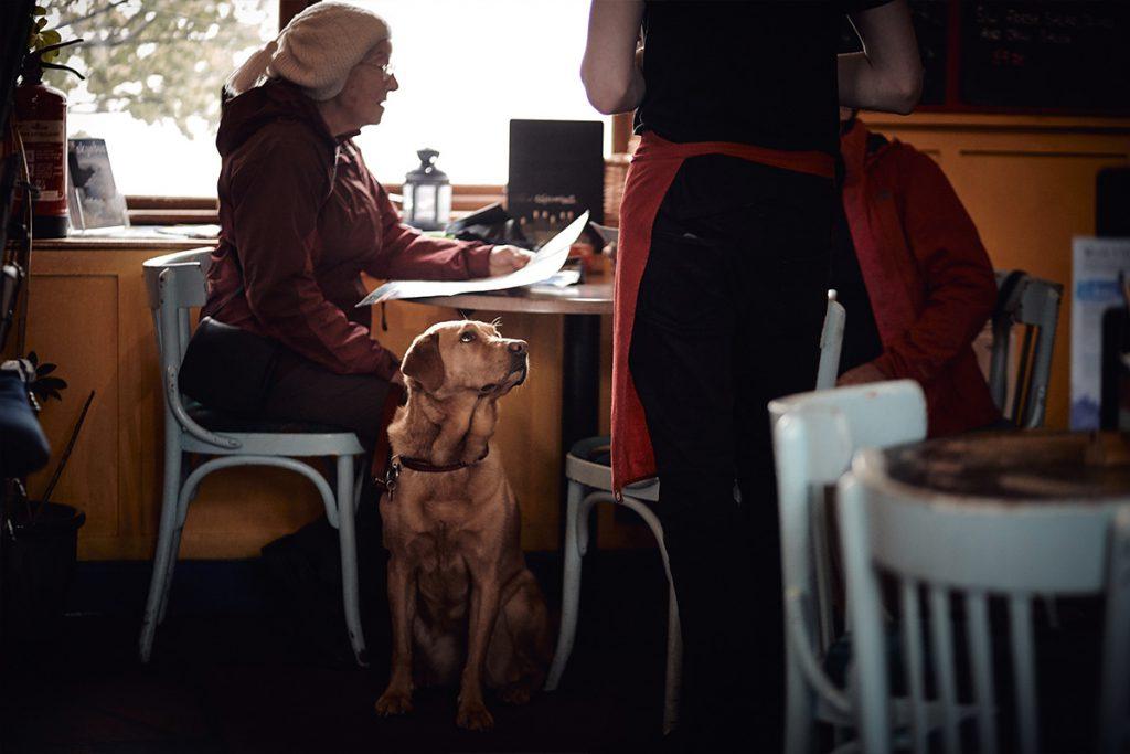 Coffee Shop:cafe Lo Res