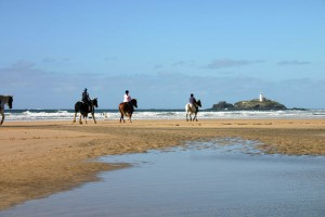 Forever Cornwall Bees Knees Gwithian St Ives Bay Riding