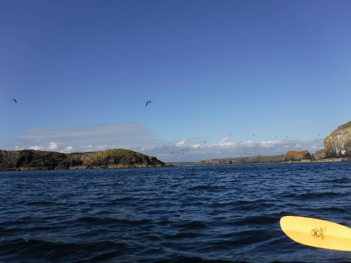 Forever Cornwall Mullion Island