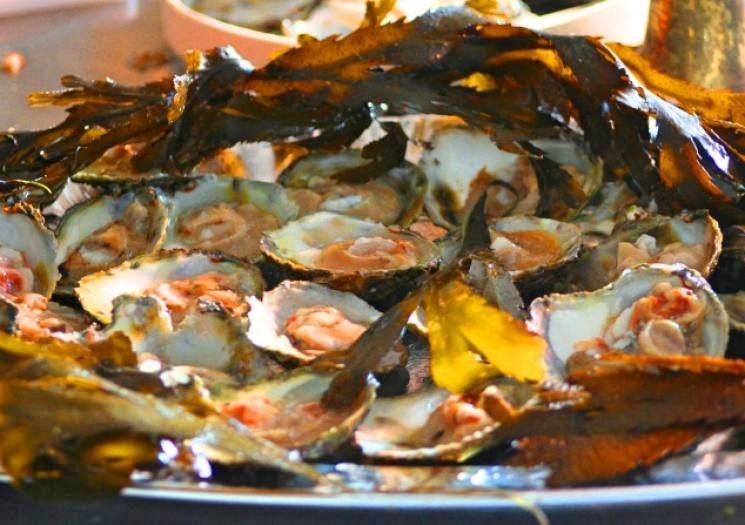 Forever Cornwall Oyster Festival