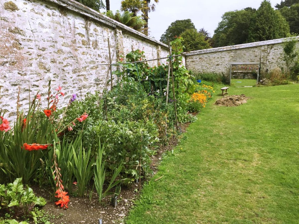 Forever Cornwall Penrose Walled Garden Veg Patch