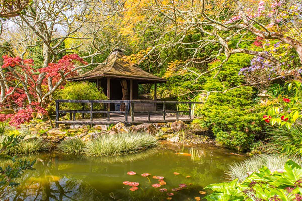 Japanese Garden 3104
