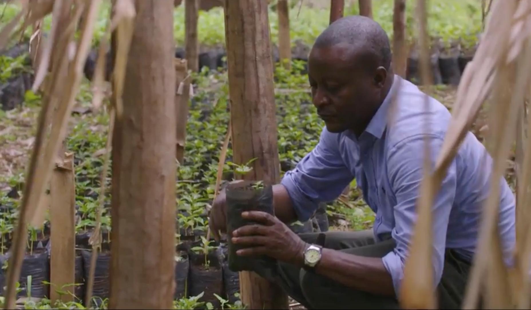 JohnK Planting Trees