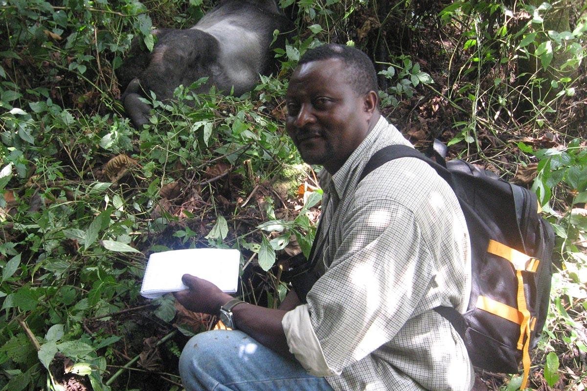 John Kahekwa With Gorilla In KBNP