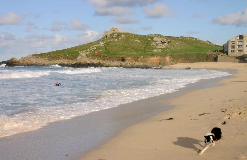 A Dog Running On Porthmeor Beach